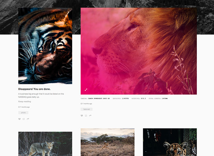 Tumblr Theme: Grid