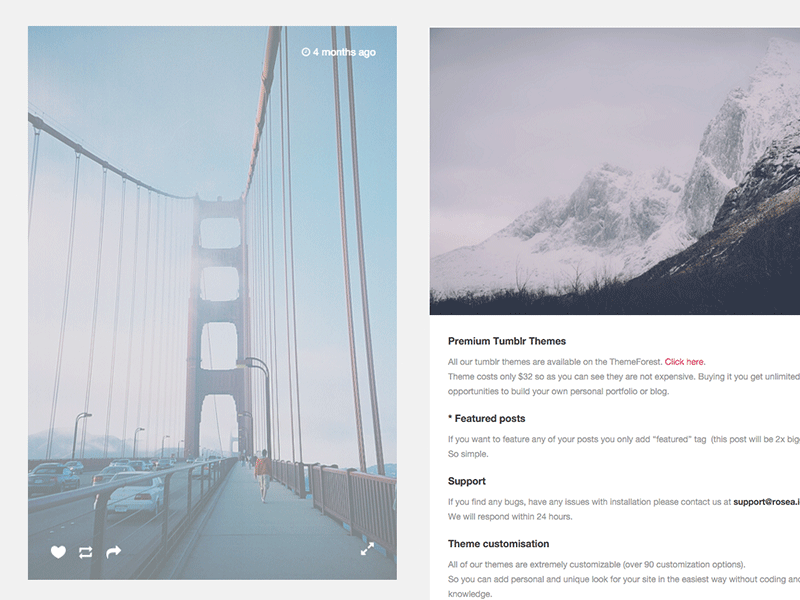 Tumblr Theme: Photo - Customization